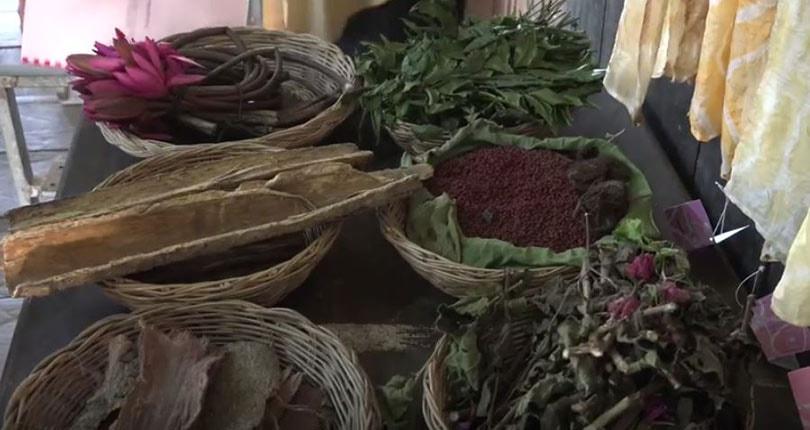 Duurzame textiel innovaties: lotus vezel