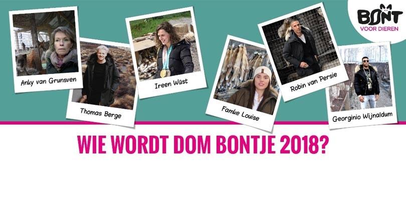 Verkiezing Dom Bontje van start