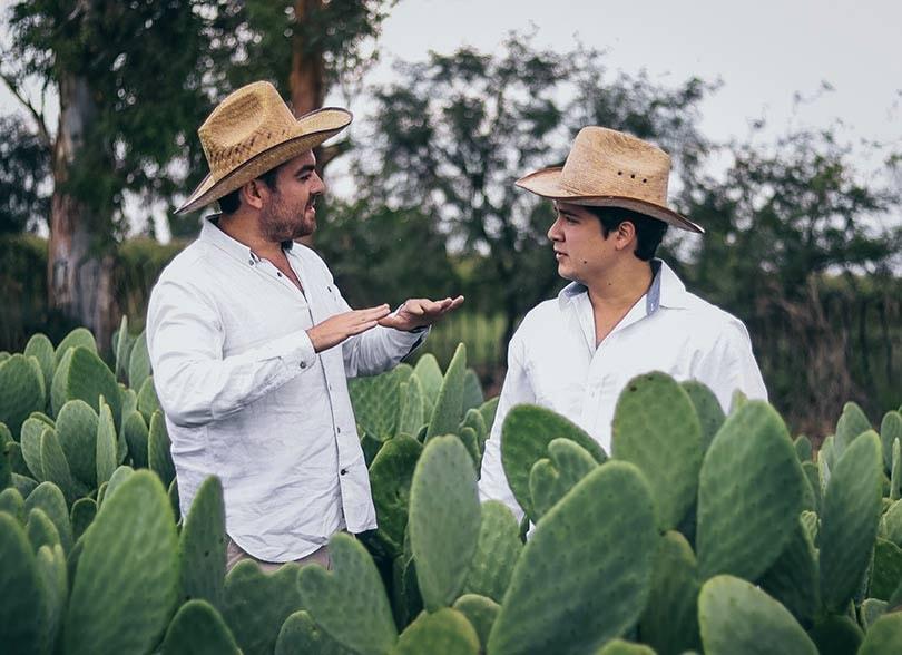 Duurzame textiel innovaties: Veganistisch cactusleer uit Mexico