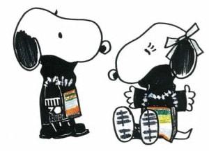 Designerkleding voor Snoopy